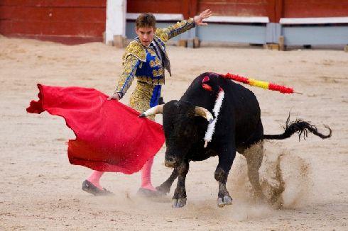 В сентябре арена ''Plaza de Toros de Las Ventas'' находится в центре внимания десятков тысяч человек
